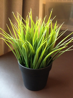 Piante finte da interno piante finte - Piante finte da interno ...