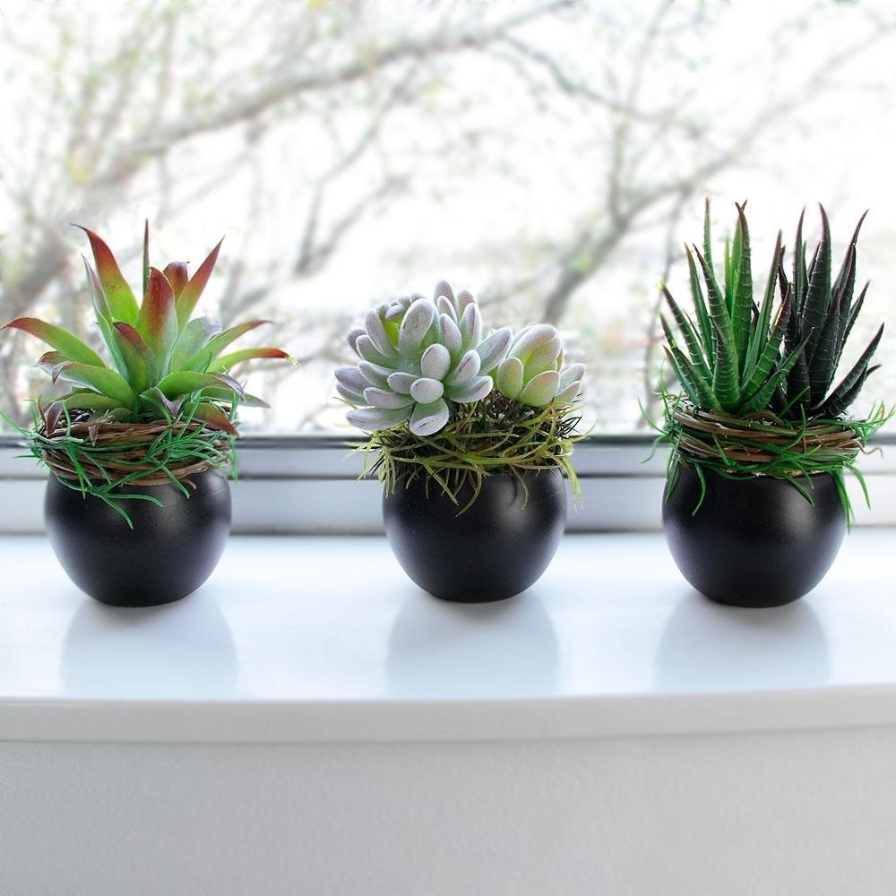 piante finte da interno - Piante Finte