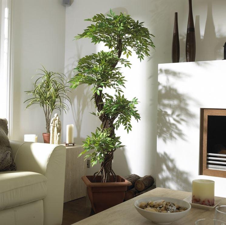 piante finta da appartamento