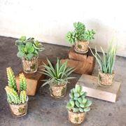 Vasi con fiori finti piante finte fiori finti in vaso for Piante artificiali economiche