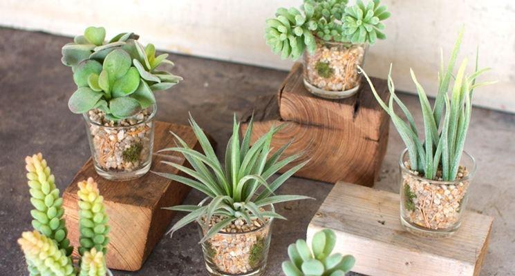 piante grasse finte piante finte piante grasse artificiali