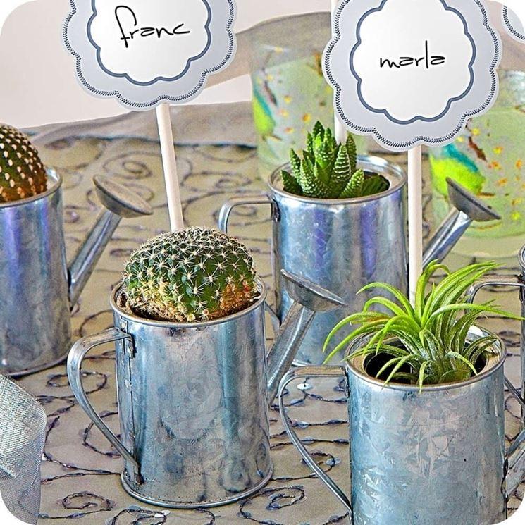Favoloso piante grasse bomboniere - Piante Grasse IS18