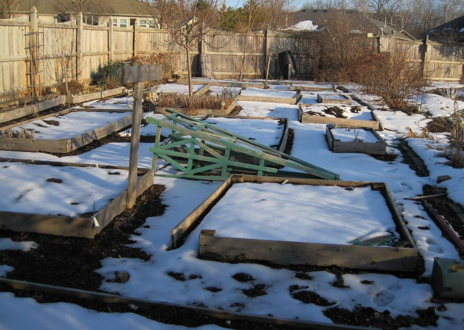 Verdure invernali orto verdure invernali orto for Orto invernale
