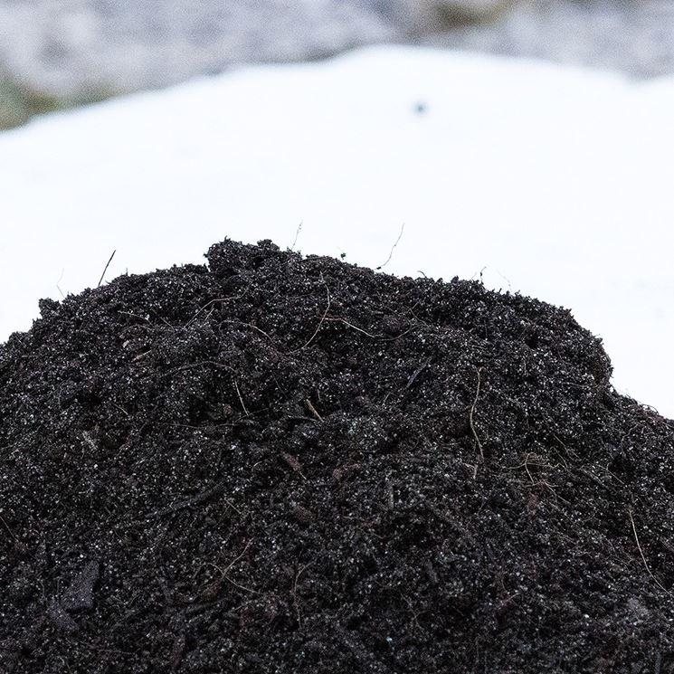 terriccio con sabbia per tappetti erbosi