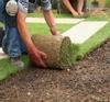 Tecniche di giardinaggio