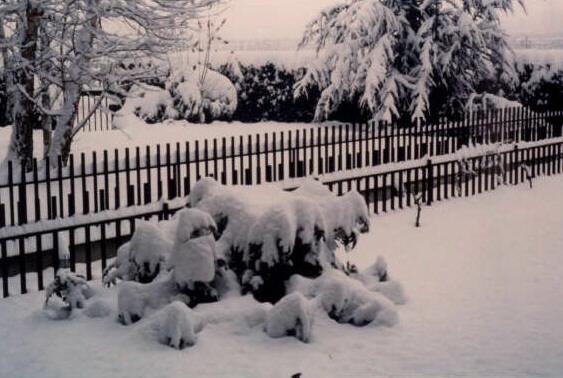 Le foto dell 39 inverno forum di for La piattaforma del secondo piano progetta le immagini