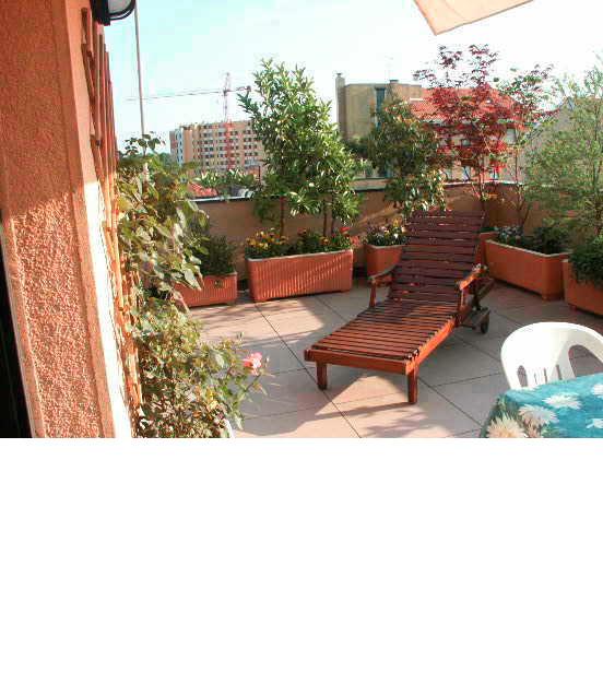 Piante per terrazzo frangisole per terrazzo con piante - Piante sempreverdi per terrazzi ...