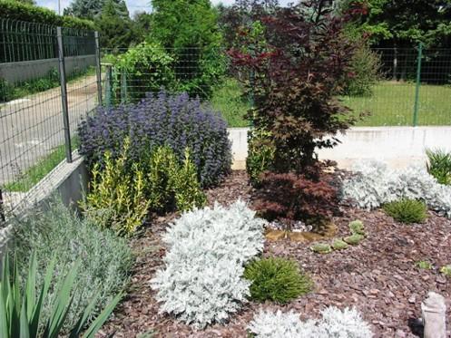 Corteccia pino per giardini