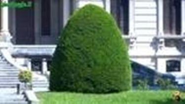 stili di giardinaggio
