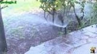 Introduzione all^impianto d^irrigazione