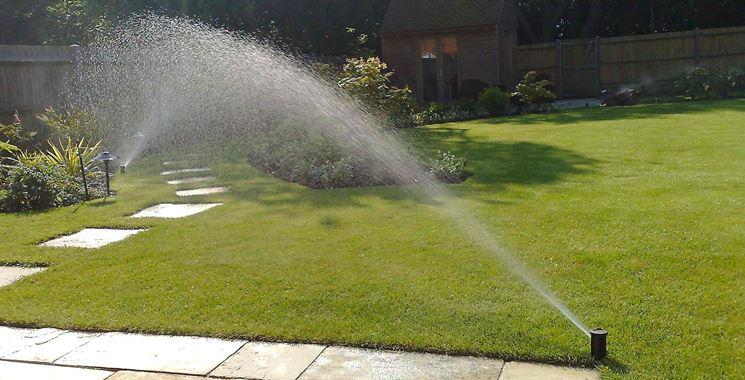 Quando quanto e dove innaffiare le piante come for Irrigatori oscillanti