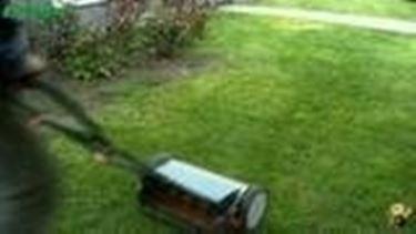 Il taglio dell'erba