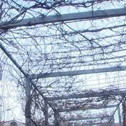 Posa struttura giardino verticale