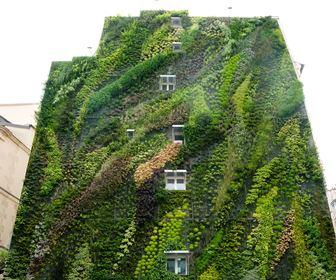 Muri verticali