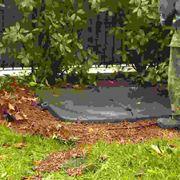 Introduzione alle tecniche di giardinaggio