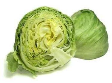 Semina insalata