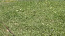 Progetto campo di irrigazione video tecniche for Tecniche di irrigazione