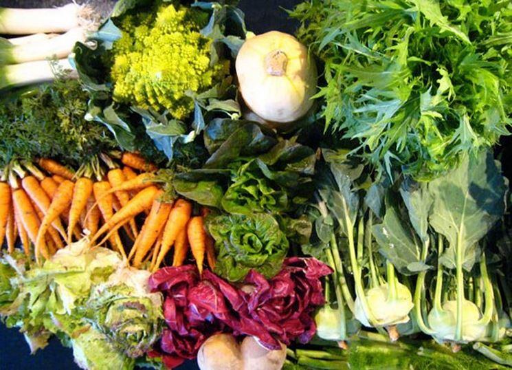 Risultati immagini per orto verdure